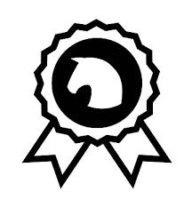 Flock Applicatie Velours Medaille Met Paard