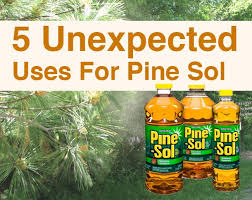 5 unexpected uses for pine sol