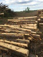 Cedar Fence Posts Kijiji In Ontario Buy Sell Save With Canada S 1 Local Classifieds
