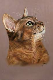 Pin by Felicia Howell on art | Cats illustration, Cat painting, Cat  portraits