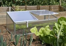mini greenhouse with cover grabone nz