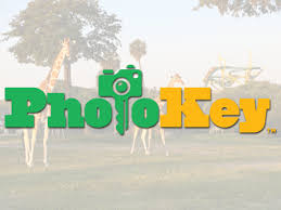 photo sharing program called photokey