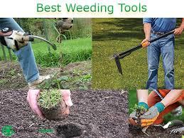 best weeding tools 2020 various types