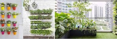 balcony garden design considerations