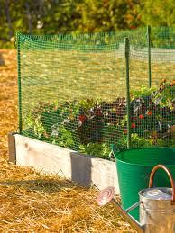 Pin By Jo Anne Fischer On Vegetable Gardens Garden Fence Panels Garden Supplies Small Backyard Landscaping