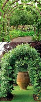 21 easy diy garden trellis ideas