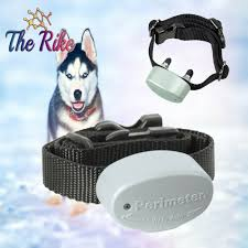 Perimeter Dog Receiver Collar 7k 10k Compatible 700series Invisible Fence System Perimeter In 2020 Invisible Fence Dogs Perimeter
