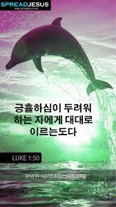 korean bible quotes luke whatsapp mobile give