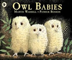 Owl Babies : Martin Wadell