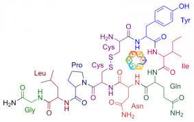 chemical formula for love