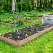 raised garden bed kit cedar wooden