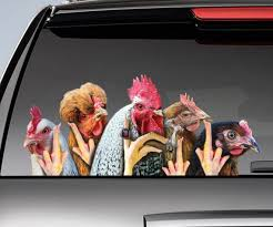 Funny Chickens Window Decal Chicken Car Sticker Funny Etsy