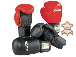 pointer boxing gloves leather 10oz