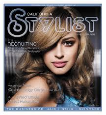 the pdf stylist and salon
