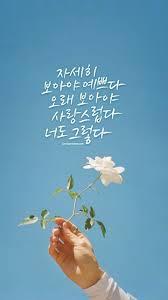 korean pictures wallpaper vogue premium