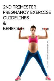 second trimester guidelines