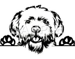 Maltipoo Vinyl Decal Car Truck Window Sticker Choice Of 1 Any Color Ebay