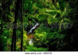 waterfalls on anini stream princeville
