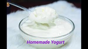 without a yogurt maker afropotluck