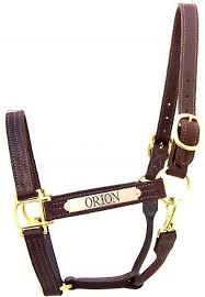 turnout leather halters