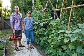 diy awesome vegetable garden