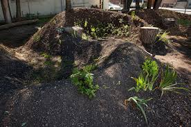 build raised permaculture garden beds
