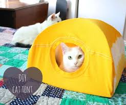 DIY Cat Tent : 9 Steps (with Pictures) - Instructables