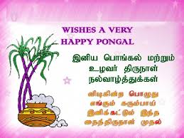 best happy pongal wishes images quotes pictures photos in tamil