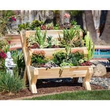 raised garden bed for beginners