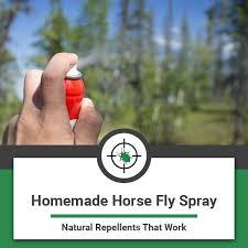 homemade horse fly spray natural diy