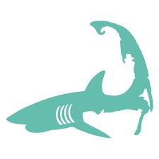 Vinyl Sticker Mint Cape Shark