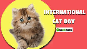 New) International Cat Day 2020 Quotes ...