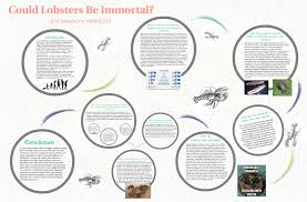 Could Lobsters Be immortal