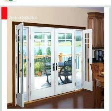 door in a door french doors