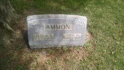 Letitia Anne Gibson Ammon (1886-1972) - Find A Grave Memorial