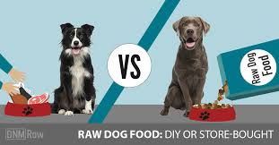 raw dog food homemade vs bought