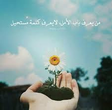صور فيسبوك جميلة صور جميلة للفيس بوك صباح الورد