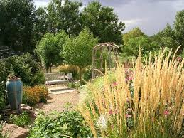 amarillo botanical gardens 2020 all