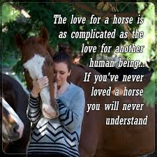 Equestrian Movement - Love Your Horse - Best Memes of 2020