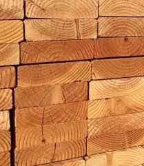 Get Signs Of Termites In Wood Floors Gif