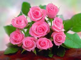 صور ورد رومانسيه اجمل الهدايا الرومانسيه حبيبي