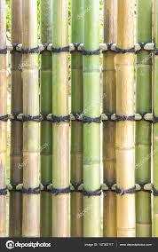 Asian Style Fence Asian Style Green Bamboo Fence Stock Photo C Torsakarin 147362117