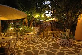 our enchanted garden at night picture