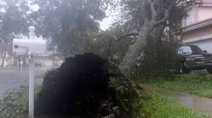 Florida death toll from Hurricane Irma ...