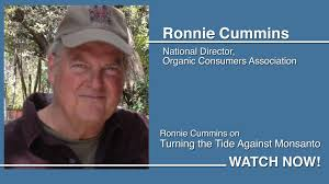 Ronnie Cummins on Turning the Tide Against Monsanto! | Health and ...