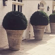 terracotta pots the garden box