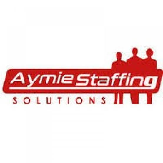 Aymie Staffing Solution Recruitment 2020 (9 Positions) (FSLC min.) N100k monthly