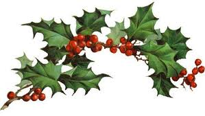 Image result for clipart holly