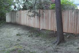 Privacy Fences Story Fence