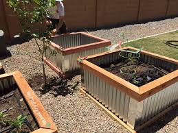 raised garden beds with corrugated metal